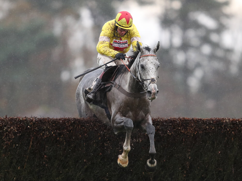 Champions Day – The Bookiesview..