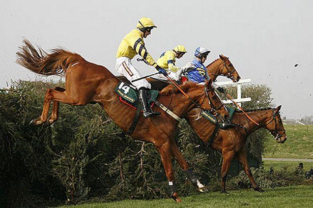 Racehorses need jobstoo..