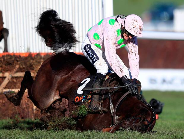 Cheltenham 2019 – The Bookies View